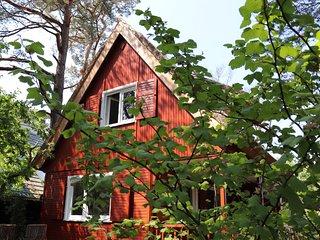 Ferienhaus Brautsteg: Reetgedecktes Haus, nur 150m zum Strand