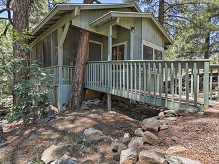 Pet-Friendly Cabin w/ Yard - 25 Mins to Flagstaff!