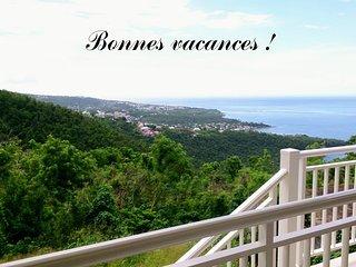 Cote Caraibes : Studio O Soley avec tres belle vue entre mer & foret tropicale !