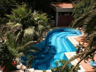 Central Athens Period House with Pool, holiday rental in Athens