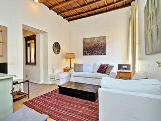 Trevi Lovely Terrace Apartment