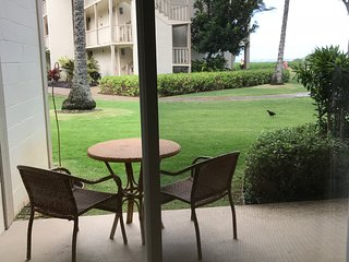 Kauai Kapaa #161 Almost Oceanfront condo Vacation Rental condo by owner OCEAN !!