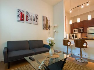 Modern and Stunning 1 BR - Walk to Downtown