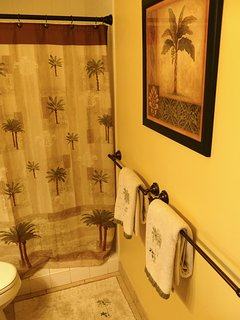master bath step in shower and quality towels