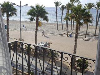 Vista desde los balcones