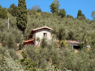 2 bedroom Villa in Montecatini Alto, Tuscany, Italy : ref 5651539