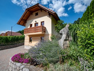 Vineyard cottage - Zidanica Pod Piramido