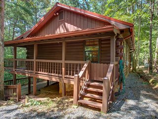 NEW LISTING! Dog-friendly cabin in the woods w/ fireplace, two decks
