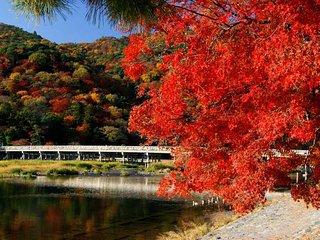 Arashiyama home
