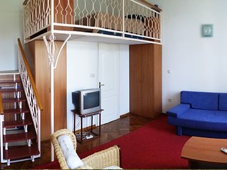 Studio Apartment Veselino