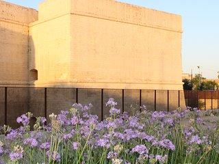 Mura Urbiche