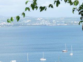 Superbe T2 Spacieux (villa), Plage a pied, Vue mer exceptionnelle, tout confort