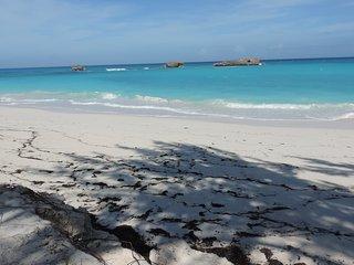 SEA STAR BEACH Front wkly & seasonal rates
