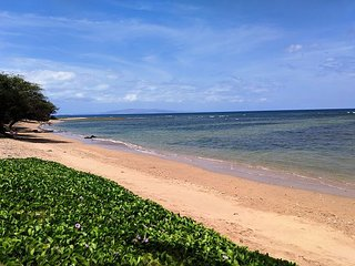 Great Summer Special!  Maui Sunset 213A ~ 1 BR, 2 BA ocean views!