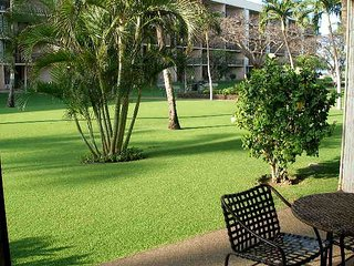 Summer Special!  Maui Sunset 105A ~ 1 BR, 2 BA Ground Floor Condo!
