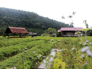 Indonesia long term rental in Sumatra, Harau