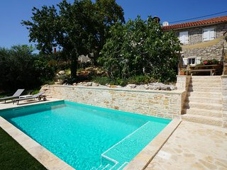 Holiday Villa Istrian Hideaway with swimming pool