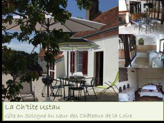 Gîte en Sologne idéalement placé pour les Châteaux de la Loire & le zoo Beauval
