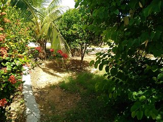 Bahamas holiday rental in Out Islands, Great Exuma