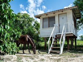 Tree top cabana in a tropical farm