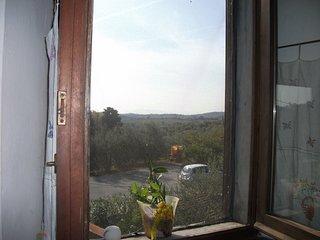 Vista dalla finestra del soggiorno                                Vista