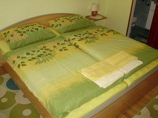 Room Knezevi Vinogradi, Baranja (S-15024-c)