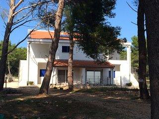 One bedroom apartment Verunic, Dugi otok (A-15209-b)
