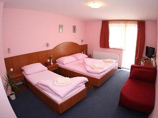 Room Oroslavje, Zagorje (S-15384-c)