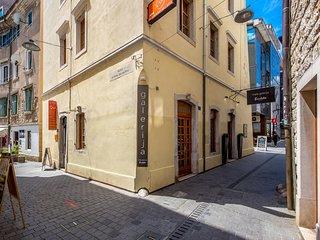 One bedroom apartment Rijeka (A-16000-a)