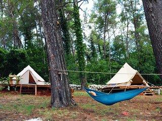 Camp DVOR    'NATURE'