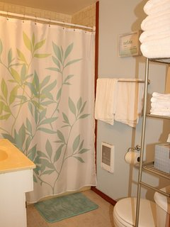 Downstairs full bathroom with shower/tub and toilet. Towels & Eco-friendly shampoo & soaps provided.