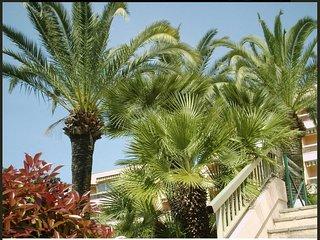 Studio 3 pers Terrasse - Piscine - Parking - Proche Plages de Juan les pins
