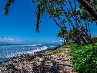 Puamana 55-4 - 2 bedroom Hawaiian Family Vacation