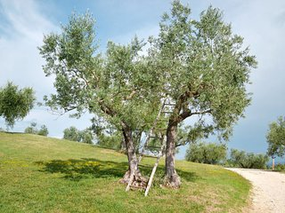 5 bedroom Villa in Toscella, Umbria, Italy : ref 5655140