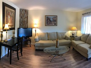 Remodeled 2brms Condo. Fantastic location! 15 min from Clearwater beach