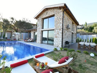 Villa Hestia: Luxury stone built house with stunning nature and sea view