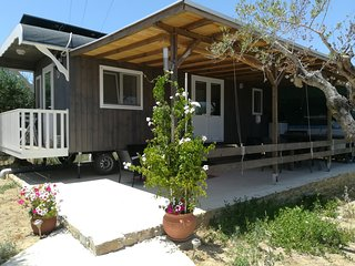 Hakuna Matata Holidays Agalia, comfortable chalet & swimming pool in Olive Grove