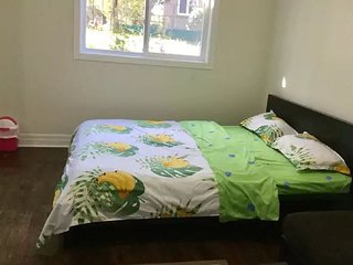 A2-Cozy Room (Finch West Subway & York University)