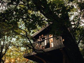 DUBoDOM treehouse