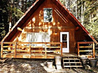 Mt. Baker Lodging – Cabin #24 - MT VIEWS, FIREPLACE, DECK, BBQ, SLEEPS 4!