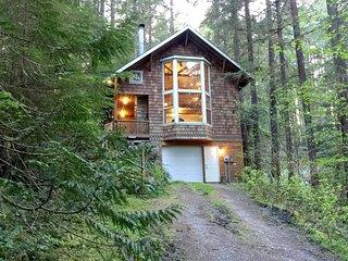 Mt. Baker Lodging – Cabin #25 – HOT TUB, BBQ, WIFI, PETS OK, SLEEPS-6!