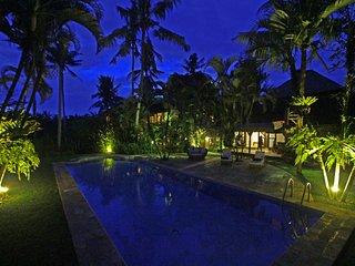 MAS Holiday Villa 10245