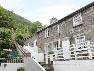 TANRALLT, woodburner, edge of Corris