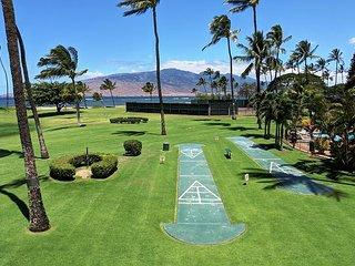 Maui Sunset 220B ~ 2 BR, 2 BA, Full Kitchen, Ocean View Condo!