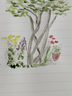 A guest's aquarel of the view from the room