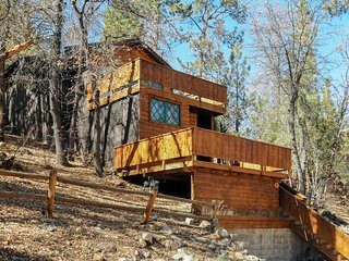 Sleepy, dog-friendly cabin just a short distance from skiing, swimming, & more!
