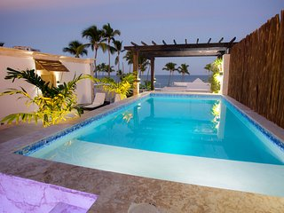 Punta Cana Bachelor Party 7 BR Beach Luxury Penthouse Style FREE BONUSES
