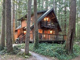 Mt. Baker Lodging – Cabin #27 – BBQ, WIFI, PETS OK, FIREPLACE, SLEEPS-10!