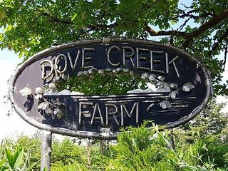 Haven at Dove Creek