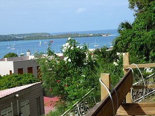 'Orchidées de Minuit' :Un éclat d'Antilles à Le Marin en Martinique.